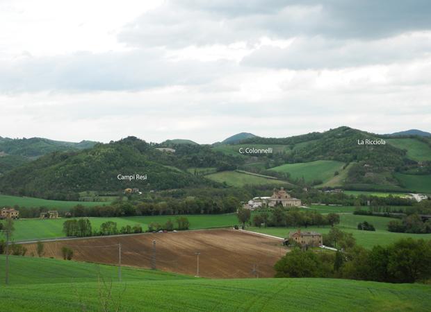 I terreni di Michelangelo